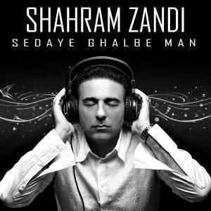 Shahram Zandi – Sedaye Ghalbe Man