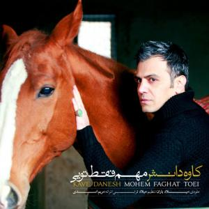 Kaveh Danesh – Mohem Faghat Toe