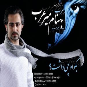 Behnam Mirarab – Bego On Chi Dasht