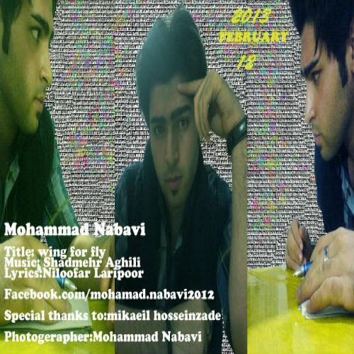 Mohammad Navabi – Wing For Fly