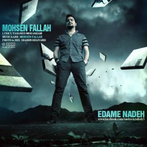 Mohsen Fallah – Edame Nade