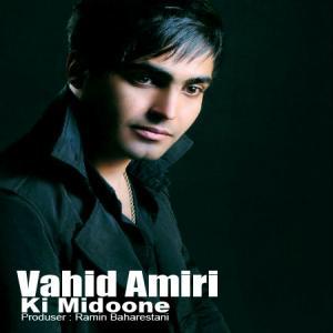 Vahid Amiri – Ki Midoone