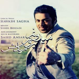 Siavash Sagha – Ye Rooz Miadesh