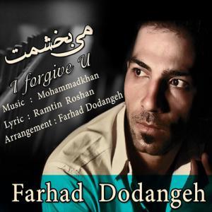 Farhad Dodangeh – Mibakhshamet