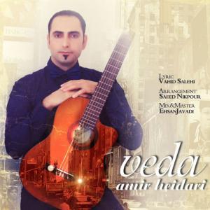 Amir Arad – Veda