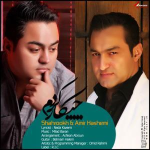 Shahrokh & Amir Hashemi – Chikar Kardam