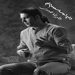 Alireza Sadri – Daram Ehsasamo Migam