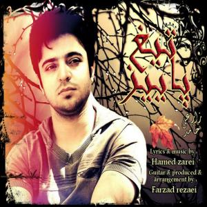 Hamed Zarei – The Blade Of Autumn