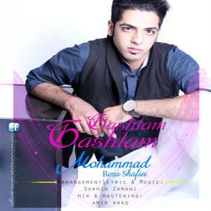 Mohamad Reza Shafiei – Gashtam Gashtam