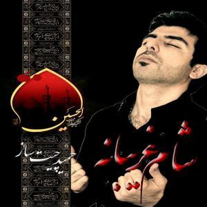 Hamid Chitsaz – Sham Ghariban