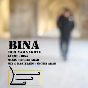 Bina – Midoonam Sakhteh