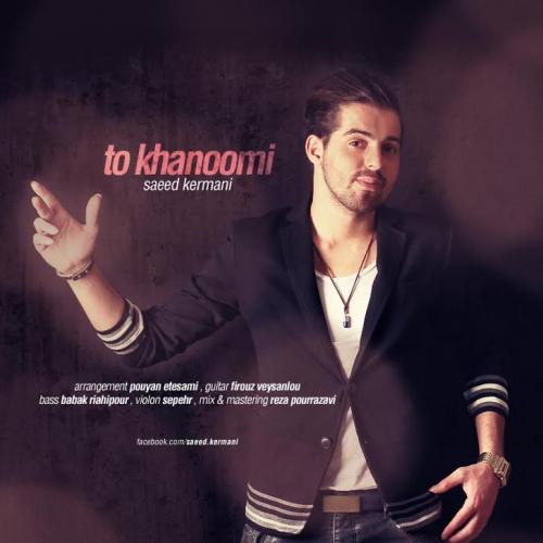 دانلود آهنگ سعید کرمانی  تو خانومی