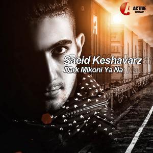 Saeed Keshavarz – Dark Mikoni Ya Na