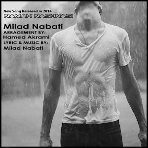 Milad Nabati – Namak Nashnasi