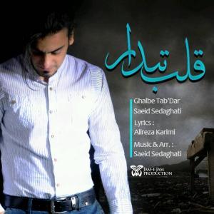 Saeid Sedaghati – Ghalbe Tabdar