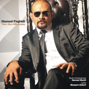 Hamed Faghihi – Toro Hess Mikonam