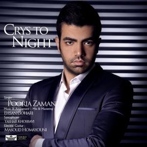 Pooria Zamani – Crys To Night