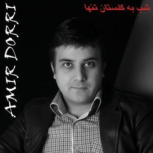 Amir Dorri – Shab be Golestan Tanha