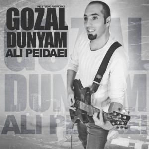 Ali Peidaei – Gozal Dunyam