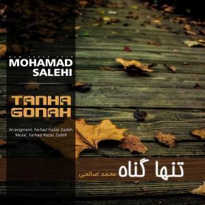 Mohamad Salehi – Tanha Gonah