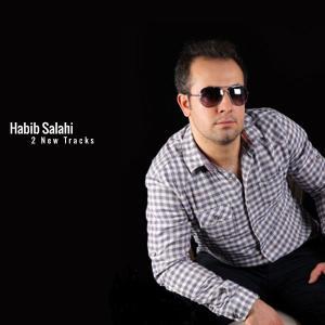 Habib Salahi – Kenarami