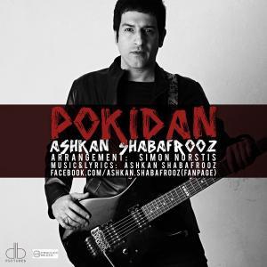 Ashkan Shabafrooz – Pokidan