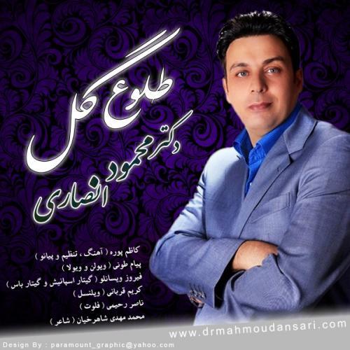 دانلود آهنگ  محمد انصاری  طلوع گل
