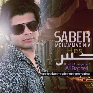 Saber Mohammad Nia – Hess