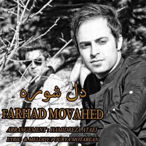 Farhad Movahed – Del Shooreh