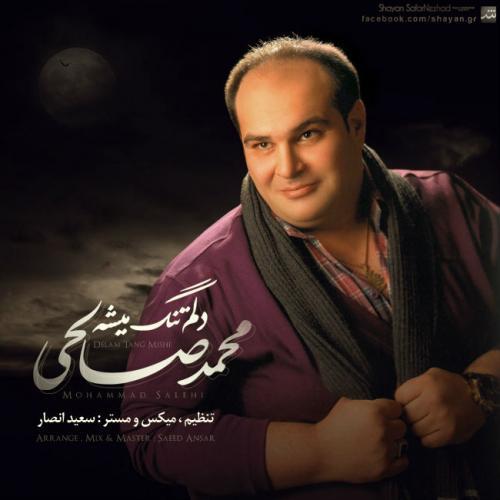 دانلود آهنگ محمد صالحی دلم تنگ میشه