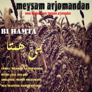 Meysam Arjomandan – Bi Hamta