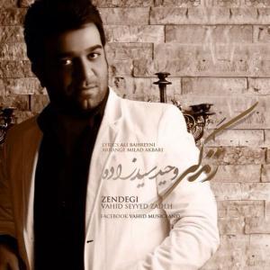 Vahid Seyyed Zadeh – Zendegi