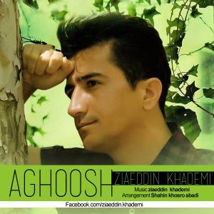 Ziaeddin Khademi – Aghoosh