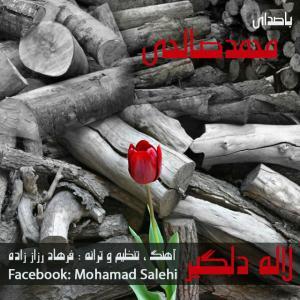Mohamad Salehi – Laleye Delgir