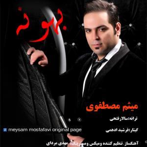 Meysam Mostafavi – Bahoone