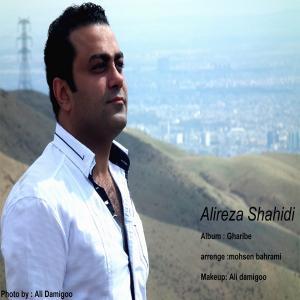 Alireza Shahidi – Nadooneste