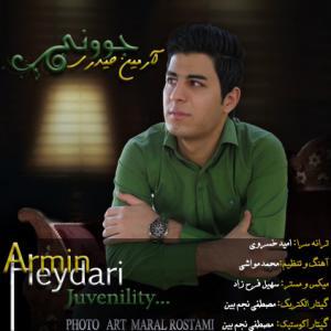 Armin Heydari – Javoni