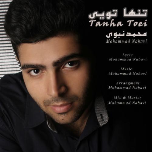 دانلود آهنگ محمد نبوی تنها تویی