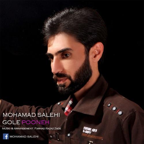 دانلود آهنگ محمد صالحی گل پونه