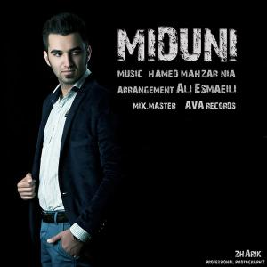 Ali Esmaeili – Midouni