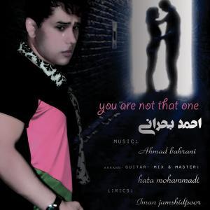 Ahmad Bahrani – To Hamoun Nisti