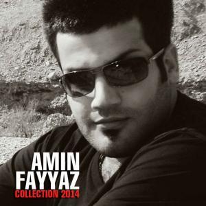 Amin Fayyaz – Collection 2014