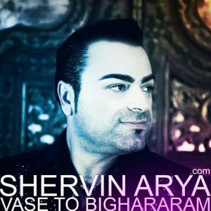 Shervin Arya – Vase To Bighararam