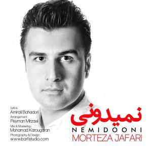 Morteza Jafari – Nemiduni