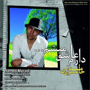 Hamed Moradi – Daram Ashegh Misham