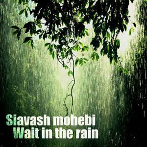 Siavash Mohebi – Wait In The Rain