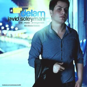 Javid Soleymani – Delam