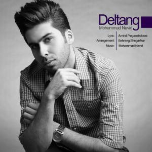 Mohammad Navid – Deltang