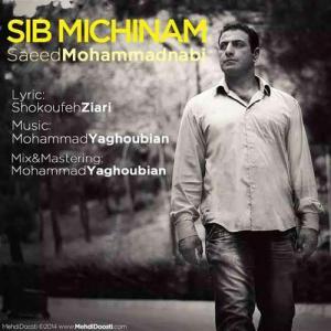 Saeed Mohammad Nabi – Sib Michinam