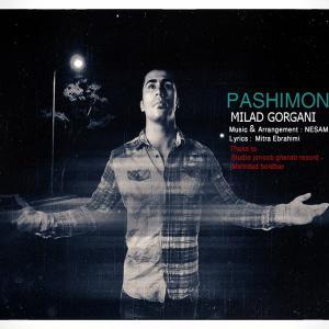 Milad Gorgani – Pashimooni